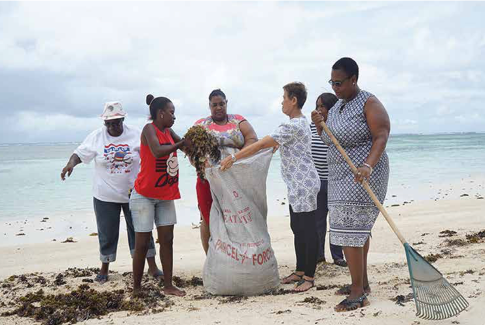 Women collecting seaweed in Mahé, to later turn into compost
