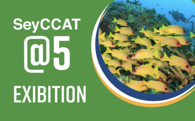 Join our SeyCCAT@5 Exhibition